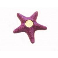 Morska zvezda 3 - svečnik