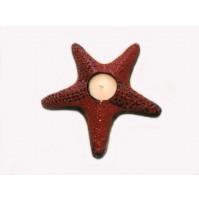 Morska zvezda 11- svečnik
