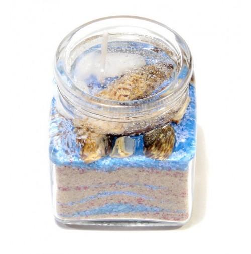 Žele svečka/morska 1