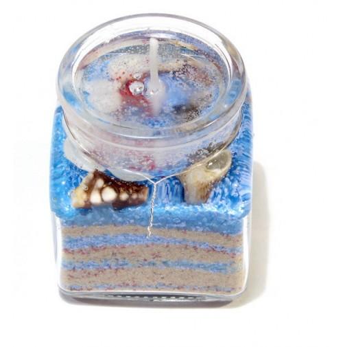 Žele svečka/morska 4